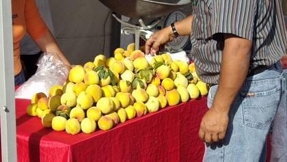 Frutas de Boyacá duraznos